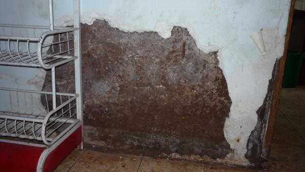 pre-construction water damage
