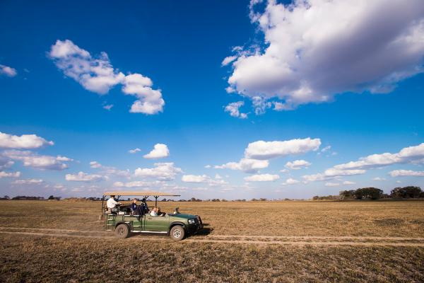 Safari game drives on the plains