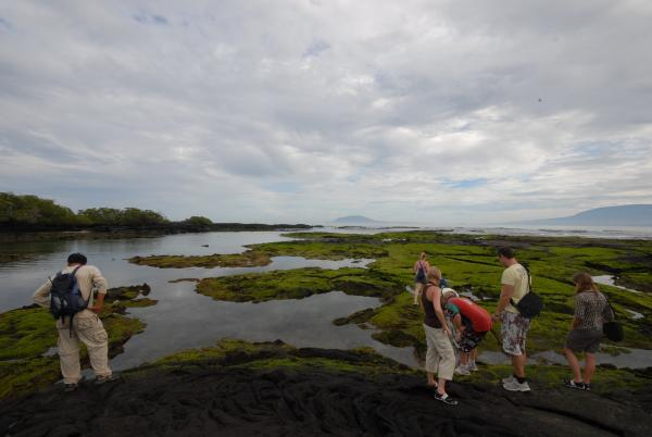 Cruise the Galapagos on the Cachalote ship