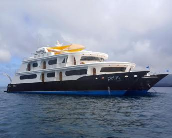 Cruise the Galapagos on the Petrel ship