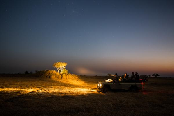 Nighttime game drives