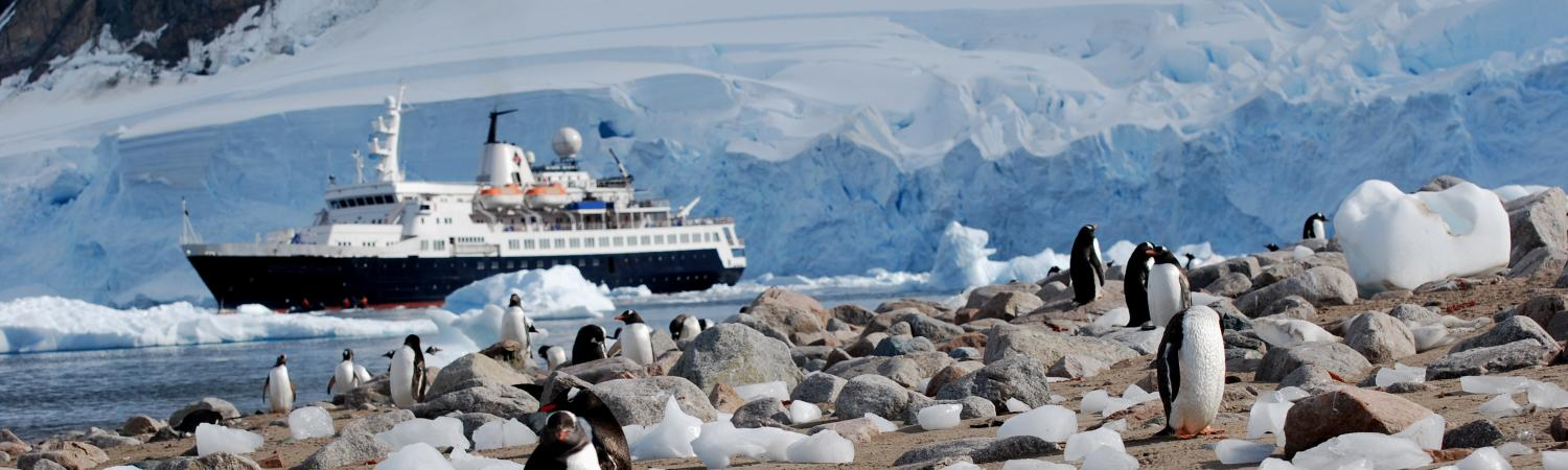 Penguins and cruise ship in Antarctica