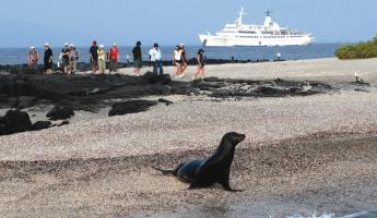 Cruise the Galapagos on the Legend ship