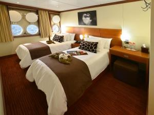 Standard stateroom on the Celebrity Xperience