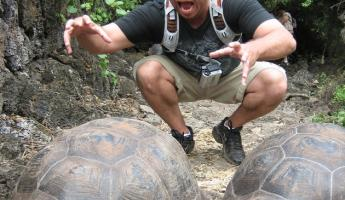Enjoying the tortoises