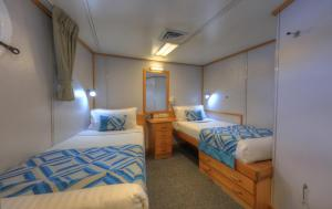 Coral Expeditions I - Cabin Twin Share