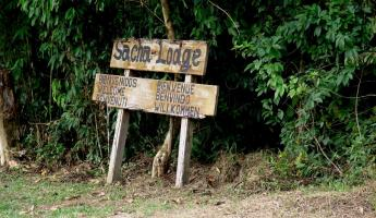 Welcome to Sacha Lodge!
