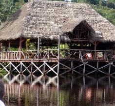 Sacha Lodge in the Amazon