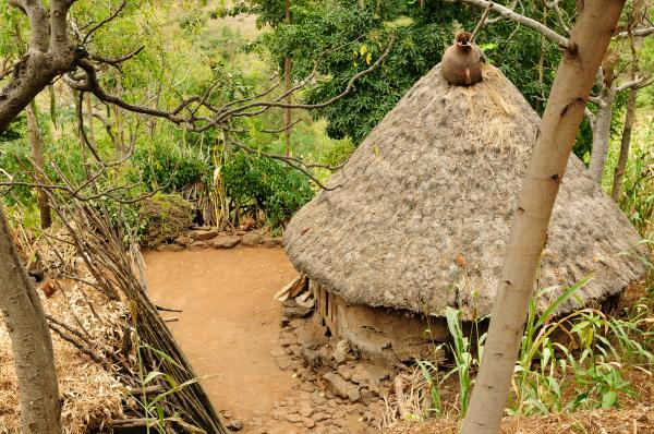 Traditional huts in Omo Valley