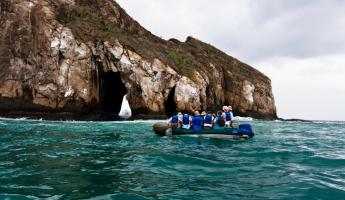 Sail the Galapagos on the Origin ship!