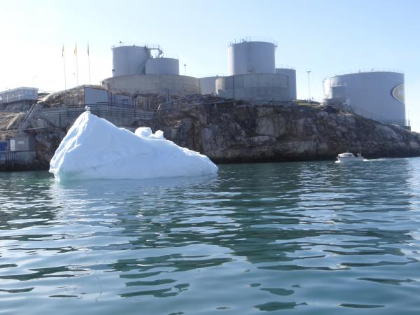 Baby bergs in the harbour of Ilulissat