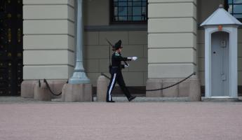 Guard at the Royal Palace.