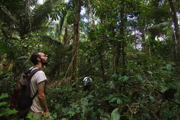 Exploring the rainforest at Romero Lodge