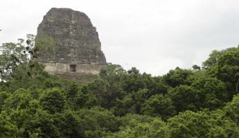 The famous Tikal temple used in the filming of Star Wars