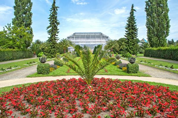 Botanical Gardens of Berlin