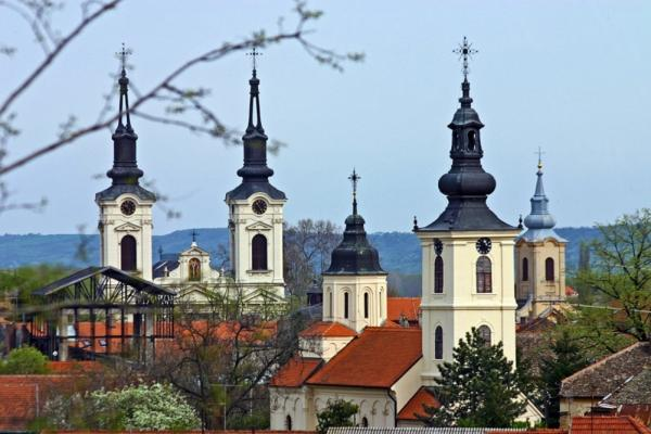Visit the town of Novi Sad