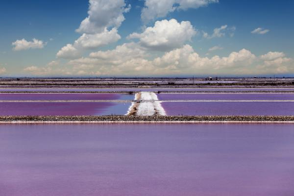 Salt Pond in Camargue, Southern Provence, France