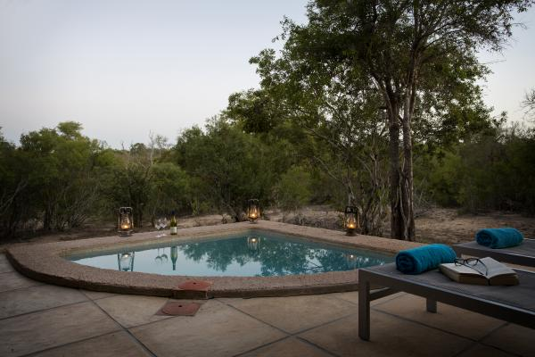 Bush facing luxury room with a private pool
