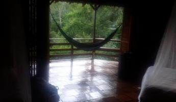 Favorite place at Selva Bananito, in the hammock