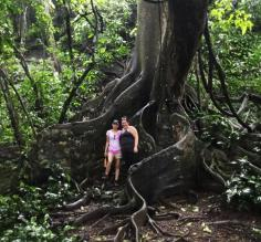 Caro and I in front of this amazing tree in Corcovado National Park