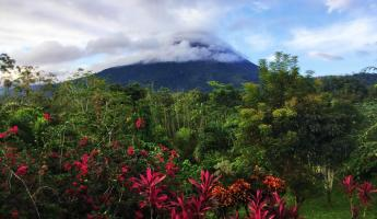 View of Mt Arenal from our room at Arenal Manoa