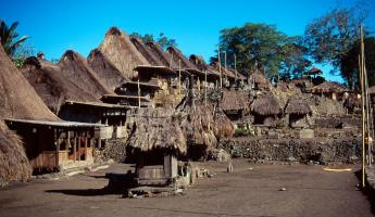 Traditional village in Flores, Indonesia