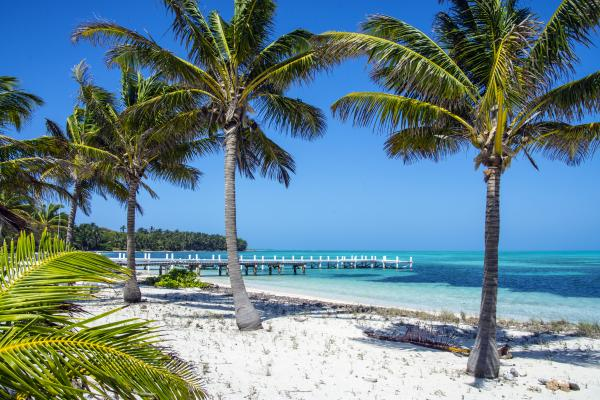 Half Moon Caye in Belize