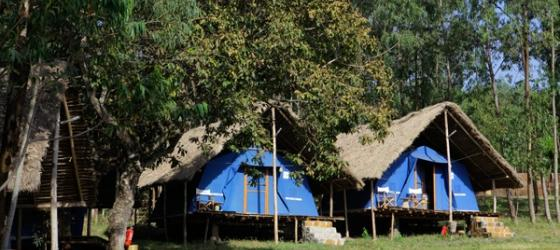 Platform structures at Eco-Omo Safari Lodge