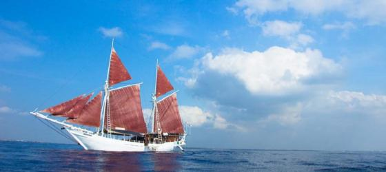 Sail on board the Katharina