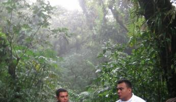 learning about the cloudforest