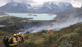 Since 1985, over 1/5 of Torres del Paine National Park's 242,000 acres have been ravaged by man-made fires