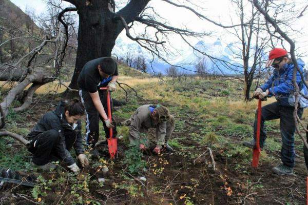 Local high school students participate in reforestation of Torres del Paine