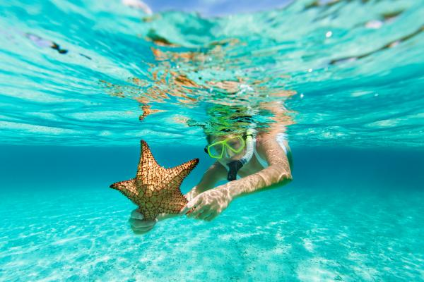 Snorkeling in the Caribbean with a starfish