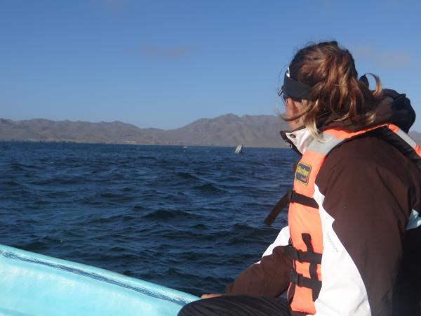 Guide spotting a grey whale Magdalena Bay
