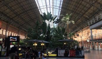 Inside the Atocha Train Station in Madrid