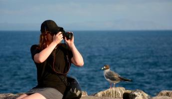 Kate photographs the wildlife.