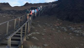 Climb over 300 stairs to the top of Bartolome Island