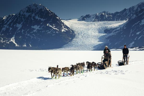 Dogsled and heli adventure