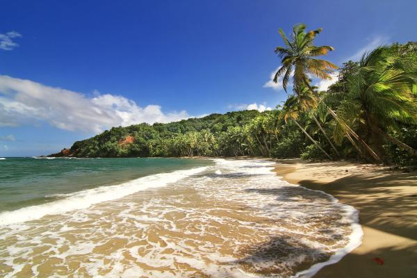 Beautiful beach in Dominica