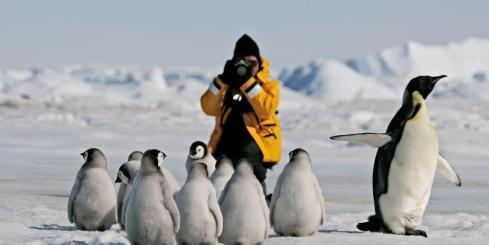 Photographing emperor penguins on Snow Hill Island