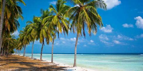 Enjoy the beauty of the Lakshadweep Islands