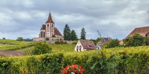 Church and surrounding vineyards in Alsace