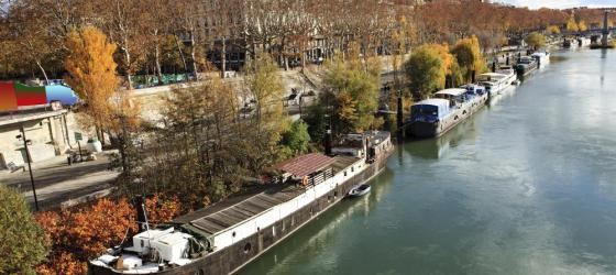 Cruise through the banks of the Rhone River