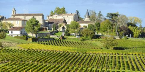 Incredible Vineyards of Bordeaux