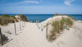Sand Dune, Normandy Coast, France