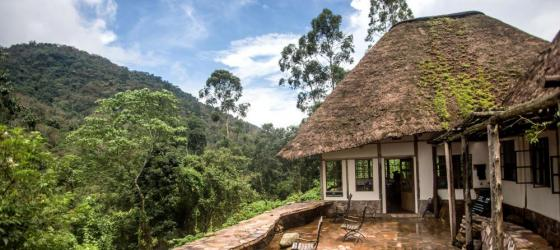 Watch for wildlife from the veranda of Bwindi Lodge