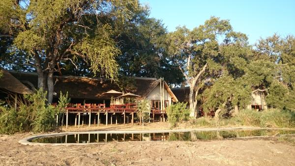 Simbavati River Lodge is located close to a lively watering hole