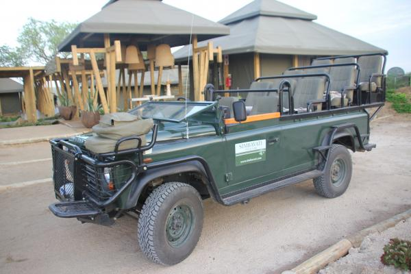 Luxury safari in Timbavati Private Game Reserve