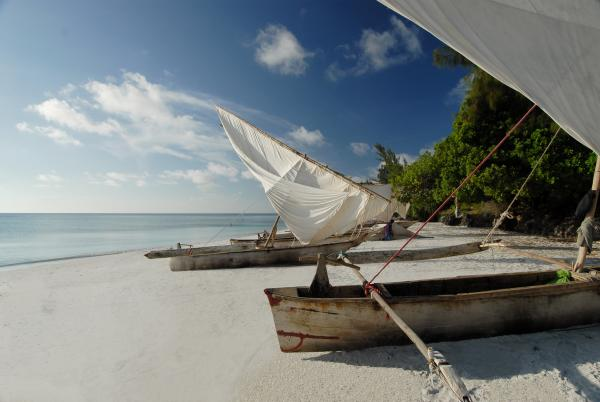 Dhows at the beach along Pemba Island's coast