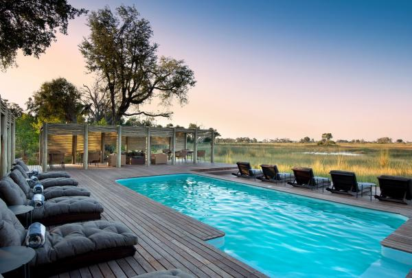 Admire Botswana's unique wildlife while relaxing on the pool